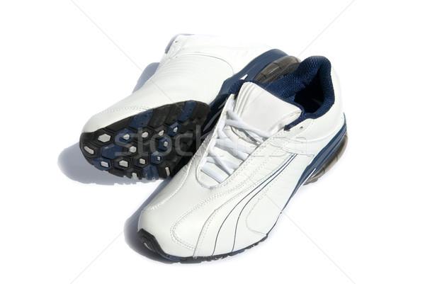 кроссовки пару белый спортзал обувь подготовки Сток-фото © Pakhnyushchyy