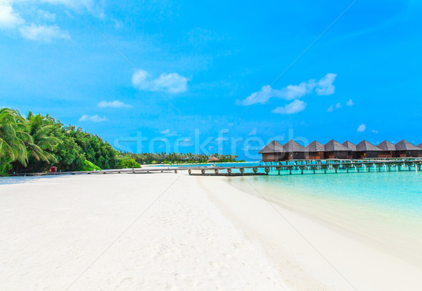 beach in Maldives  Stock photo © Pakhnyushchyy
