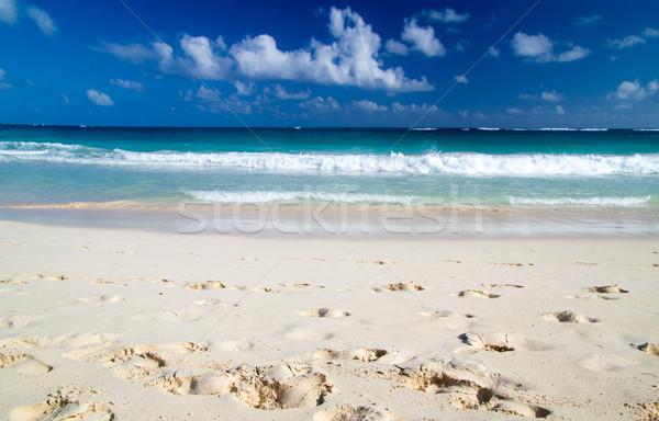 Tropische zee caribbean strand water achtergrond Stockfoto © Pakhnyushchyy