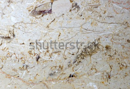 Marmer steen oppervlak decoratief muur abstract Stockfoto © Pakhnyushchyy