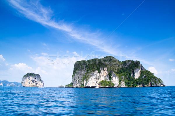 Mar krabi rocas árbol hierba belleza Foto stock © Pakhnyushchyy