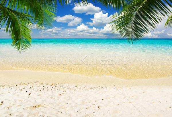Stockfoto: Zee · mooie · strand · tropische · water · achtergrond
