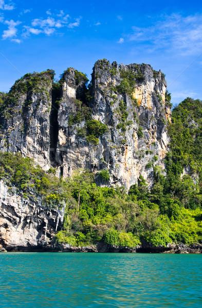 Kayalar deniz krabi ağaç çim doğa Stok fotoğraf © Pakhnyushchyy