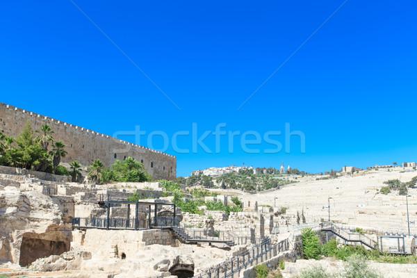 Alten Ruinen Zentrum Baum Wand Landschaft Stock foto © Pakhnyushchyy