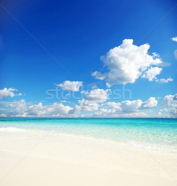 Deniz güzel plaj tropikal gökyüzü güneş Stok fotoğraf © Pakhnyushchyy