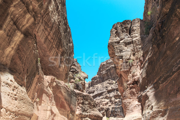 The Siq, the narrow slot-canyon Stock photo © Pakhnyushchyy