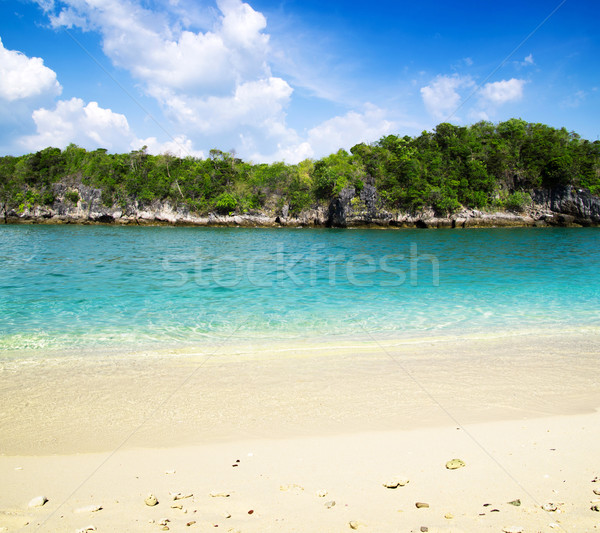 Manzara tropical island su okyanus yeşil tekne Stok fotoğraf © Pakhnyushchyy