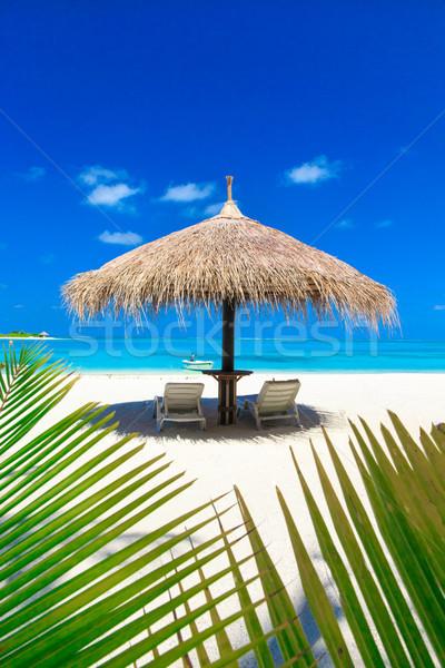 морем белый тропический пляж пальмами синий Сток-фото © Pakhnyushchyy