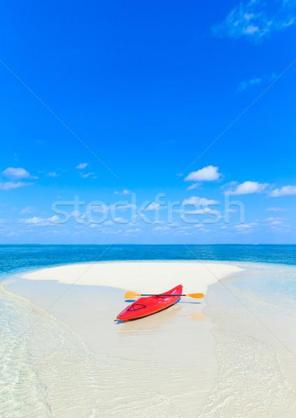 тропический пляж пальмами синий пляж природы Сток-фото © Pakhnyushchyy