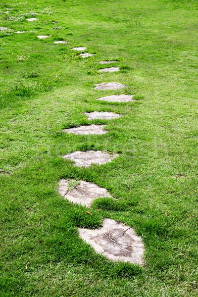 Garden stone path  Stock photo © Pakhnyushchyy