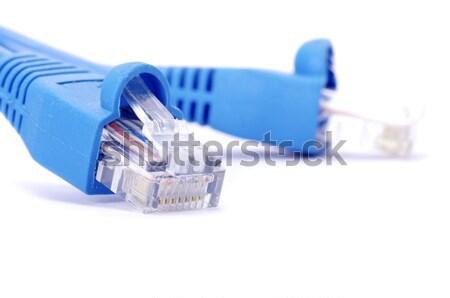 Conexão plugue macro tiro rede negócio Foto stock © Pakhnyushchyy