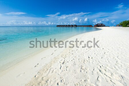 Foto stock: Praia · praia · tropical · poucos · palmeiras · azul · natureza