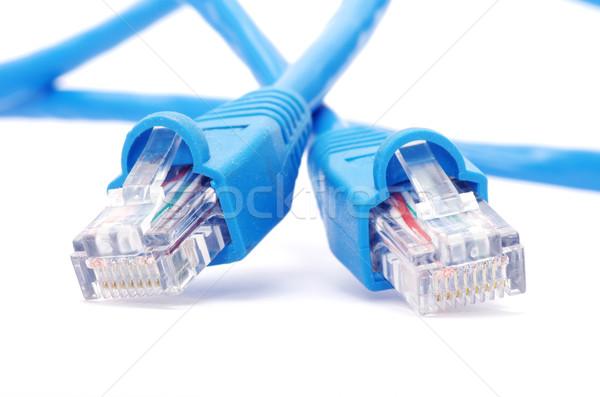プラグイン マクロ ショット ネットワーク 接続 ビジネス ストックフォト © Pakhnyushchyy