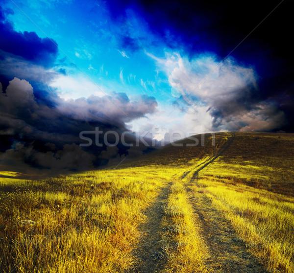 meadow  Stock photo © Pakhnyushchyy