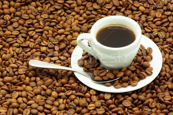 coffee grain Stock photo © Pakhnyushchyy