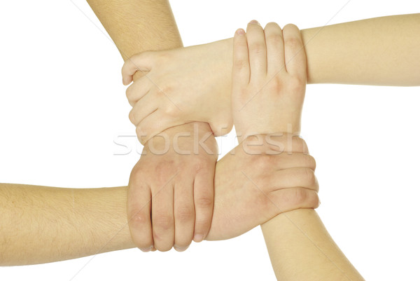 Mãos isolado branco rede grupo ajudar Foto stock © Pakhnyushchyy