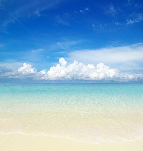 ビーチ 熱帯 海 美しい 水 背景 ストックフォト © Pakhnyushchyy