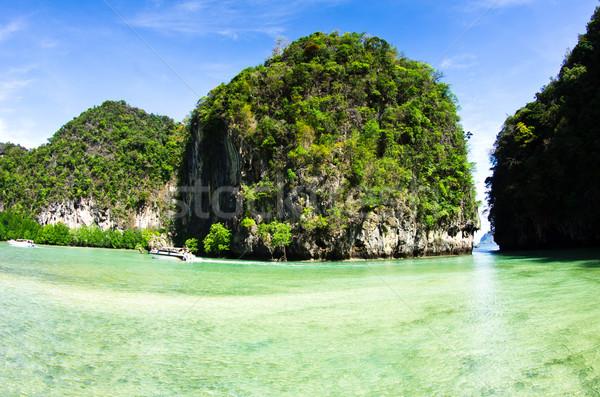 пород морем Краби дерево трава красоту Сток-фото © Pakhnyushchyy