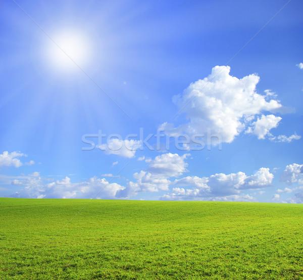 Veld blauwe hemel voorjaar gras natuur gazon Stockfoto © Pakhnyushchyy