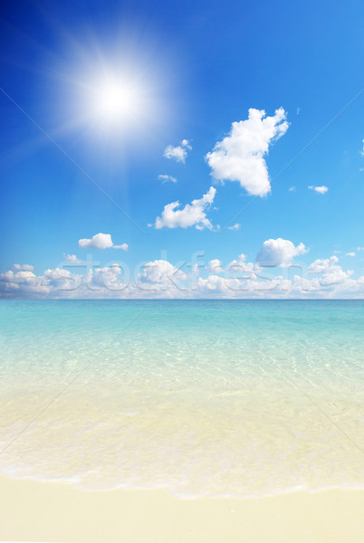 Plaj tropikal deniz güzel su arka plan Stok fotoğraf © Pakhnyushchyy