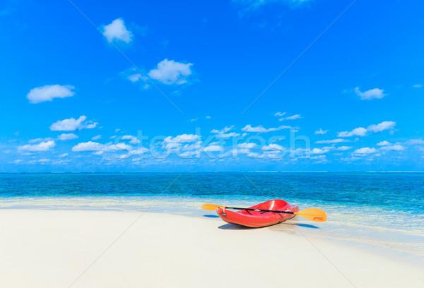 熱帯ビーチ ヤシの木 青 ビーチ 自然 ストックフォト © Pakhnyushchyy