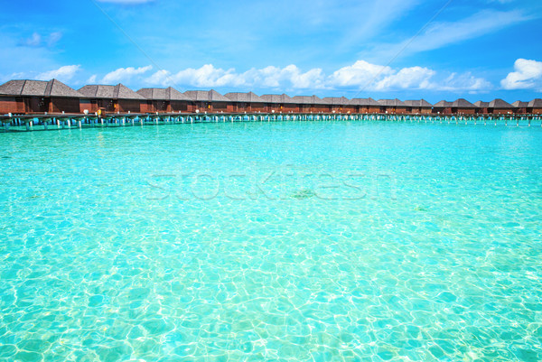 beach Maldives Stock photo © Pakhnyushchyy