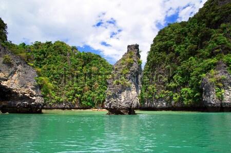 Tájkép trópusi sziget víz óceán zöld csónak Stock fotó © Pakhnyushchyy