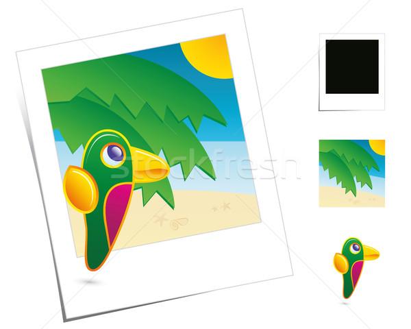 állat ünnepek papagáj évszak Polaroid alkotóelem Stock fotó © Palsur