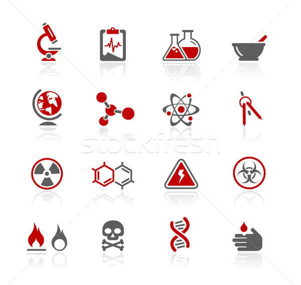 Science Icons // Redico Series Stock photo © Palsur