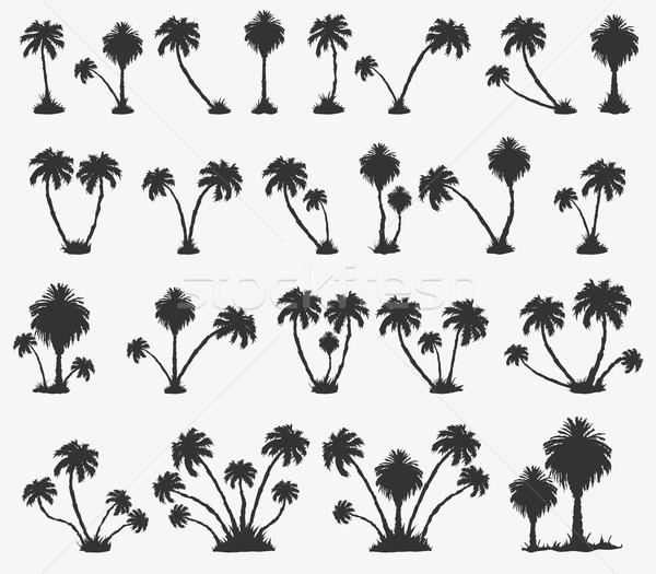 Vettore set solare Palm spiaggia buio Foto d'archivio © Panaceadoll