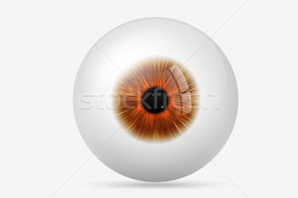 人間 眼 少女 美 緑 ボール ストックフォト © Panaceadoll