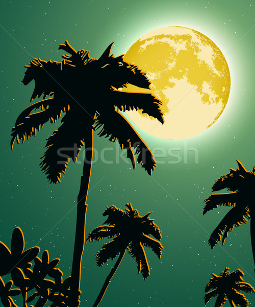 Sunsets and sunrises over the savanna with palm trees Stock photo © Panaceadoll