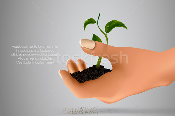 Stock photo: handful of ground with green sprout in her hands. concept of ecology
