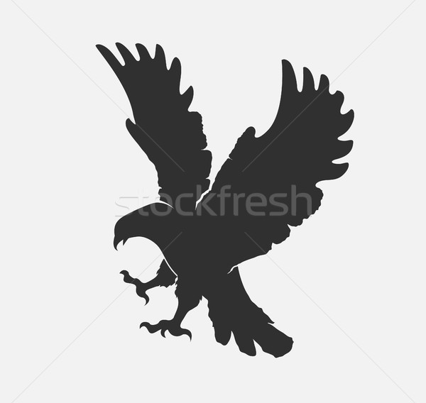 silhouette flying eagle on a white background Stock photo © Panaceadoll