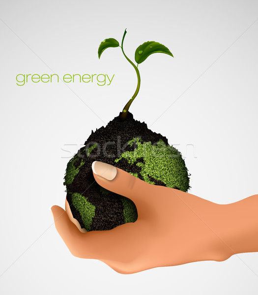 handful of ground with green sprout in her hands. concept of ecology Stock photo © Panaceadoll