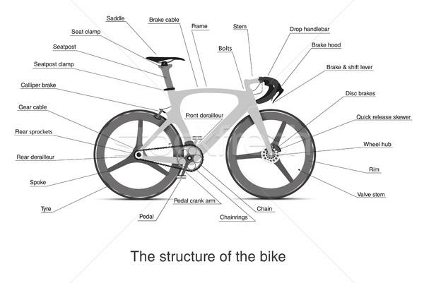 インフォグラフィック メイン 自転車 山 にログイン ストックフォト © Panaceadoll