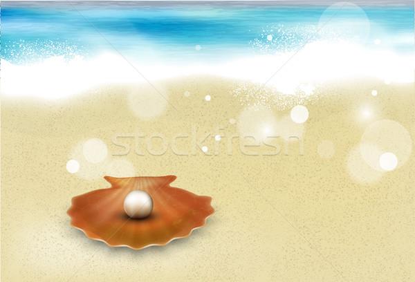 Azuur strand zanderig water natuur zee Stockfoto © Panaceadoll