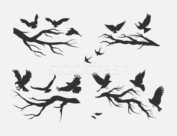 flying birds, mounted on branches Stock photo © Panaceadoll
