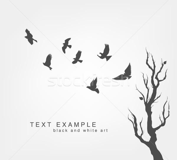 群れ 飛行 鳥 ツリー 春 ストックフォト © Panaceadoll