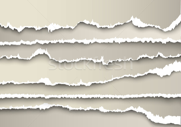 set of sheets of paper torn gray with shadows Stock photo © Panaceadoll