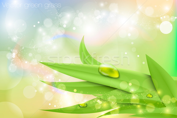 Vector background in pastel colors with green grass and dew Stock photo © Panaceadoll