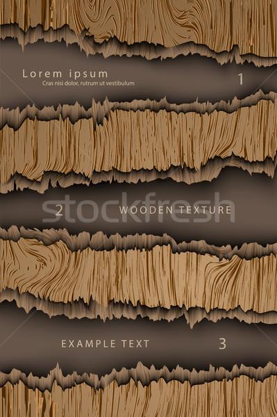 Realistico wood texture albero legno muro abstract Foto d'archivio © Panaceadoll
