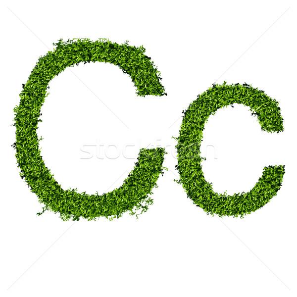 Geïsoleerd gras alfabet witte voorjaar kunst Stockfoto © Panaceadoll