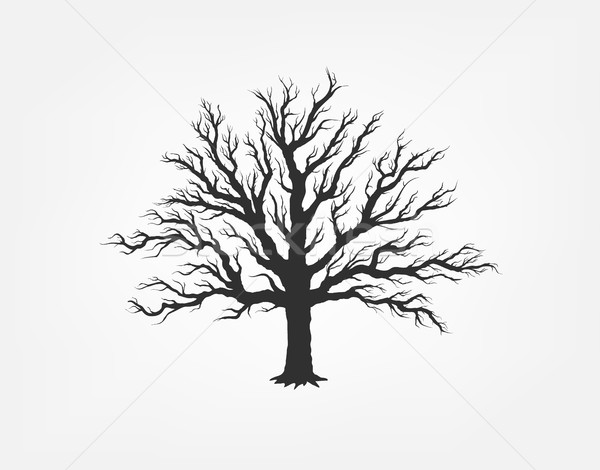 Ilustração árvore jardim ícone ecologia natureza Foto stock © Panaceadoll