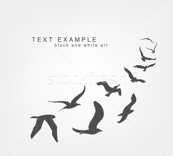 Kama Kuşlar Uçan Gökyüzü Arka Plan Boyama Vektör