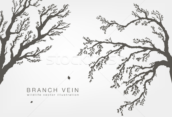 dried tree branches with birds and leaves on a light background Stock photo © Panaceadoll