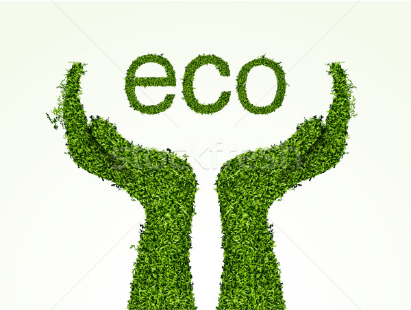 ecological concept of grass Stock photo © Panaceadoll