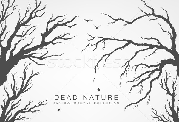 Stock photo: dried tree branches with birds and leaves on a light background
