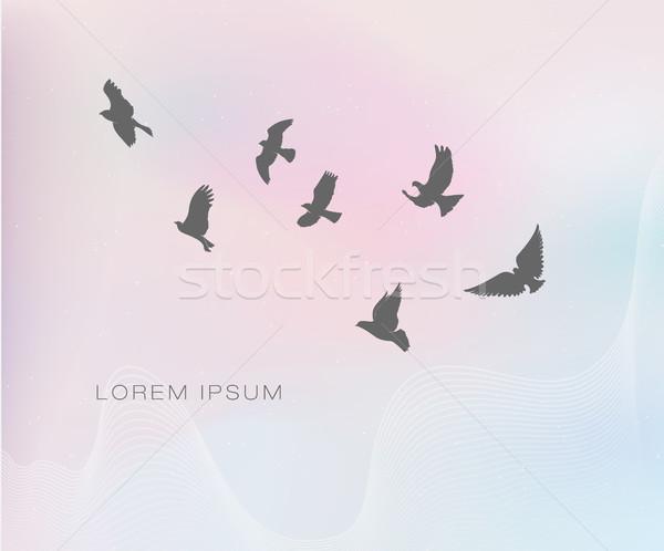Battant oiseaux pastel couleurs papier texture Photo stock © Panaceadoll