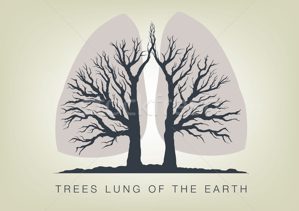 Trees - the lungs of the planet. Icon of ecology in nature Stock photo © Panaceadoll